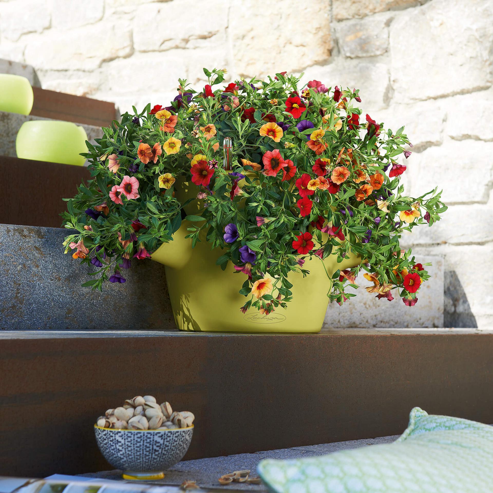 lechuza cascadino schiefergrau 36x23cm blumentopf f r kr uter. Black Bedroom Furniture Sets. Home Design Ideas