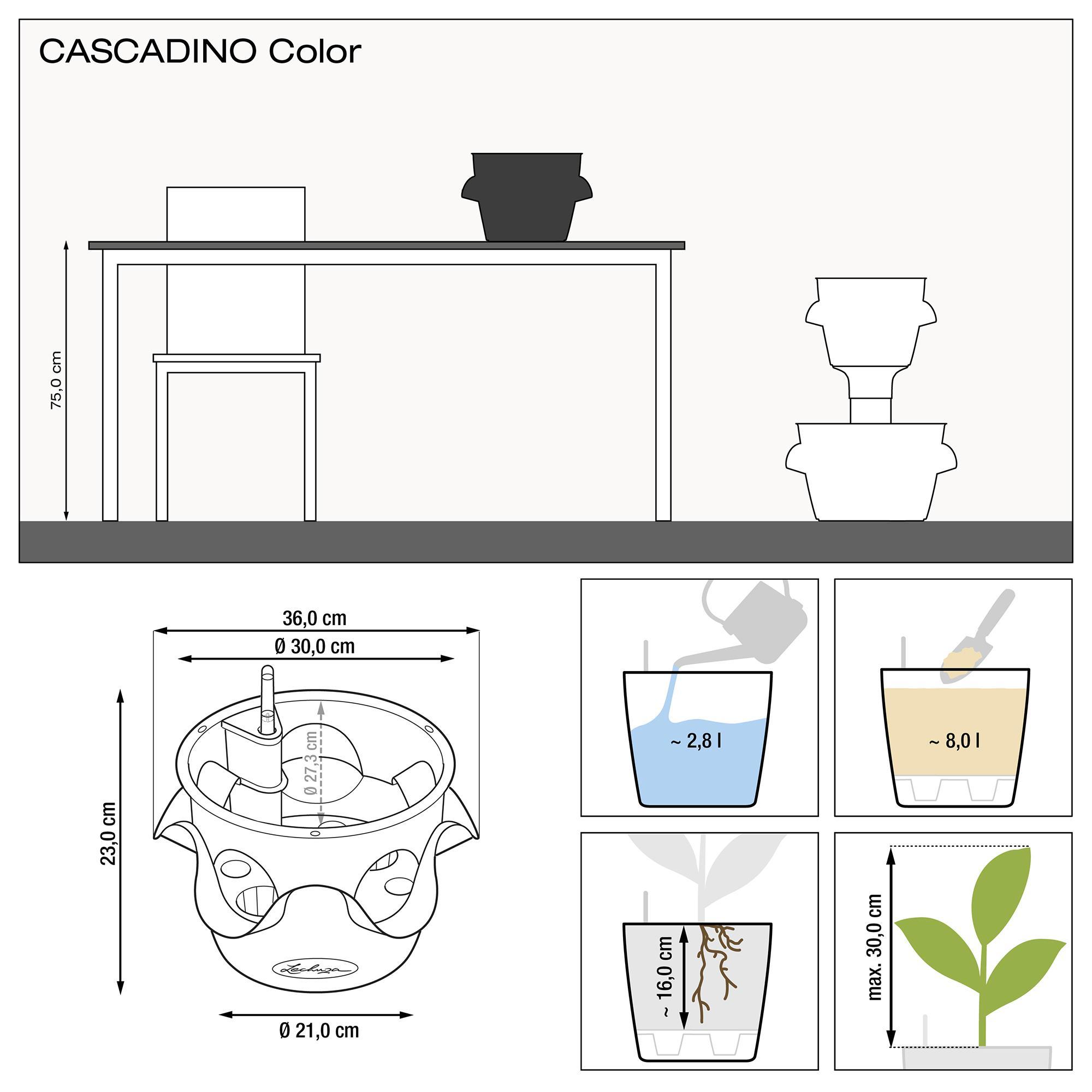 CASCADINO Color gris ardoise - Image 2