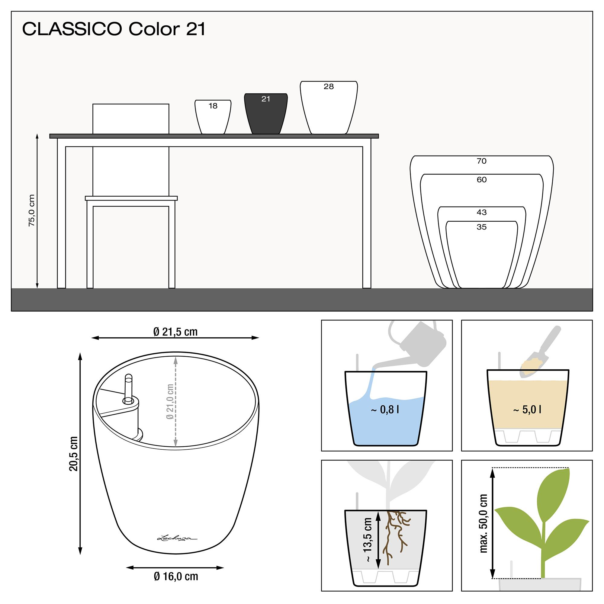 CLASSICO Color 21 muskat - Bild 2
