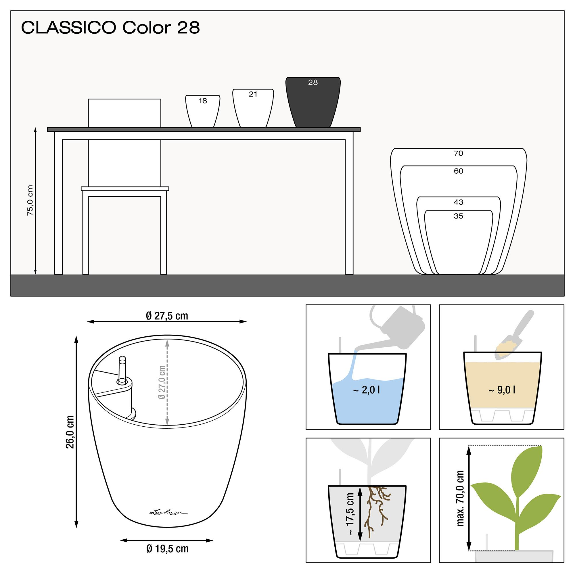 CLASSICO Color 28 purple garnet - Image 2