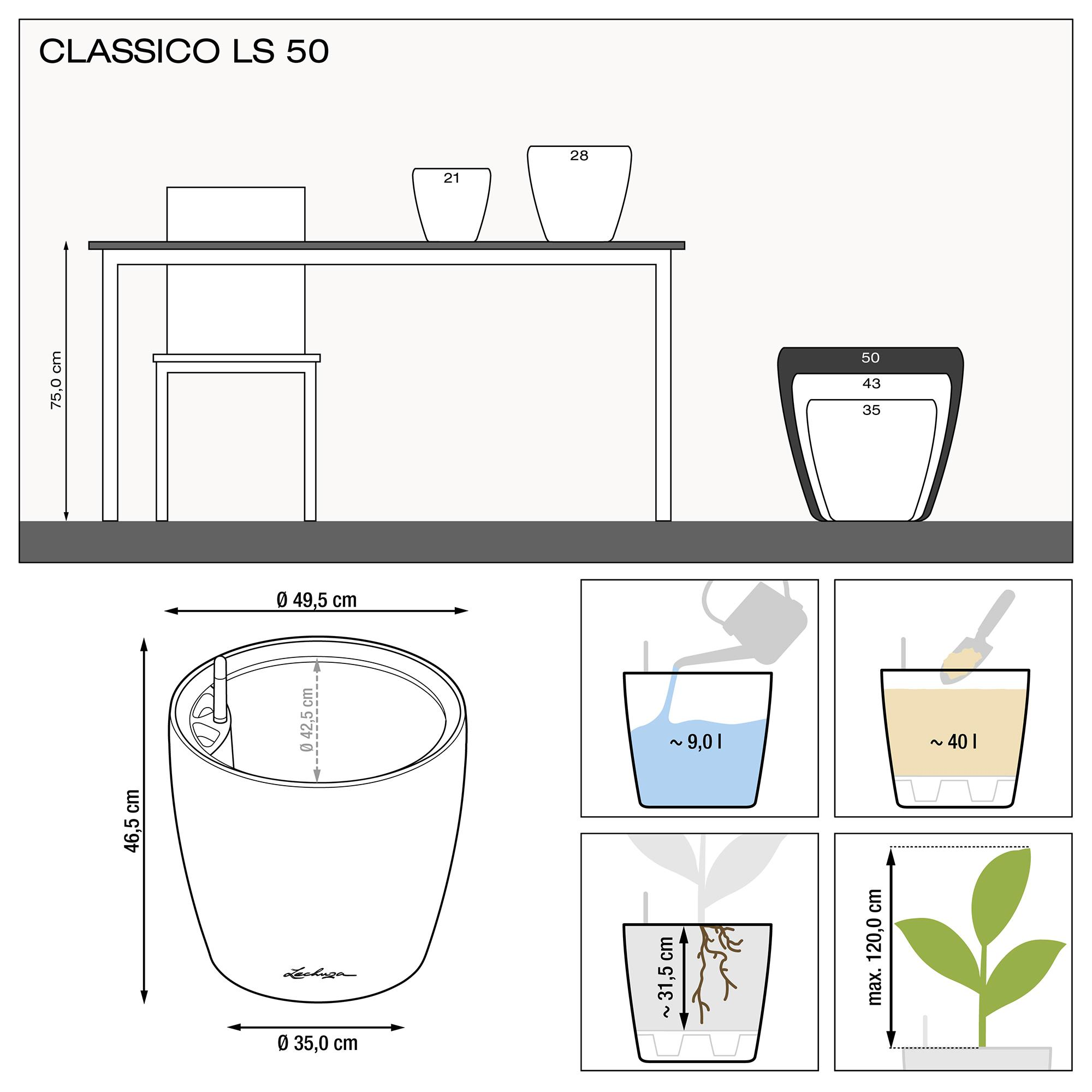 CLASSICO LS 50 expreso metalizado - Imagen 3