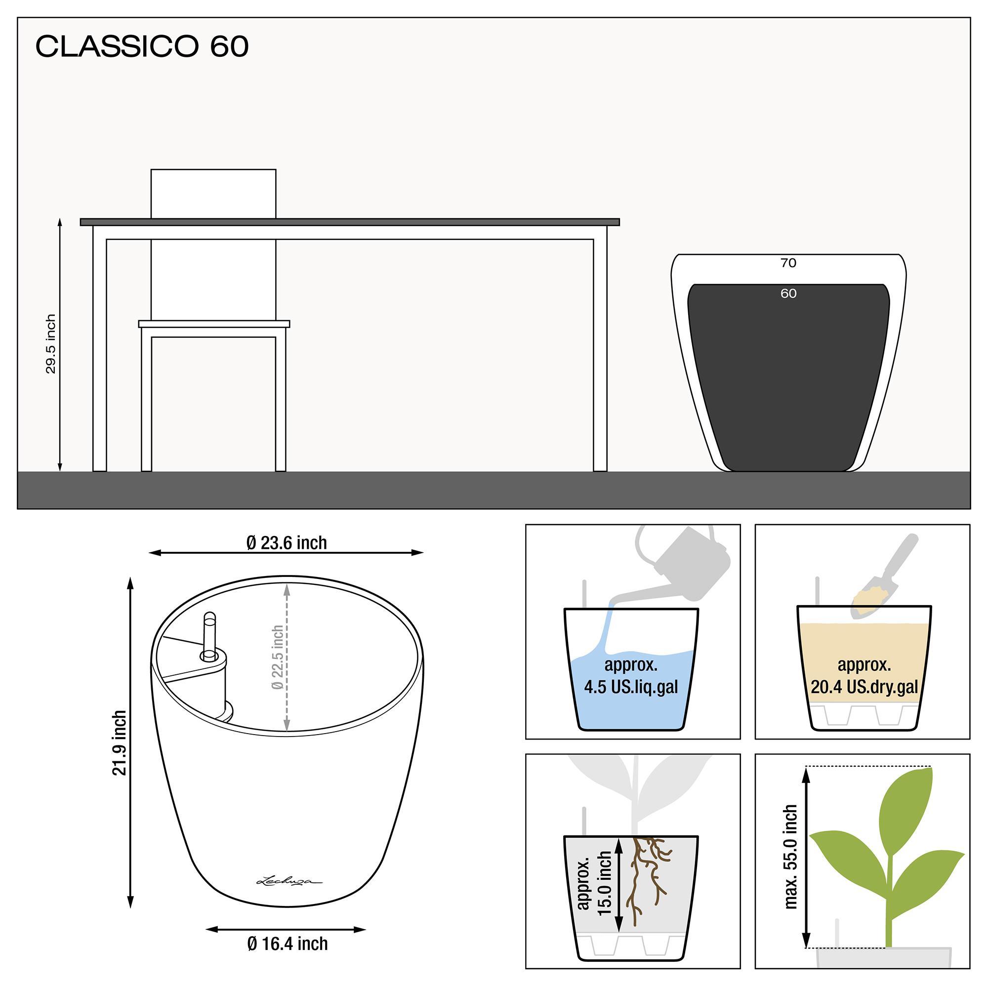 le_classico60_product_addi_nz_us