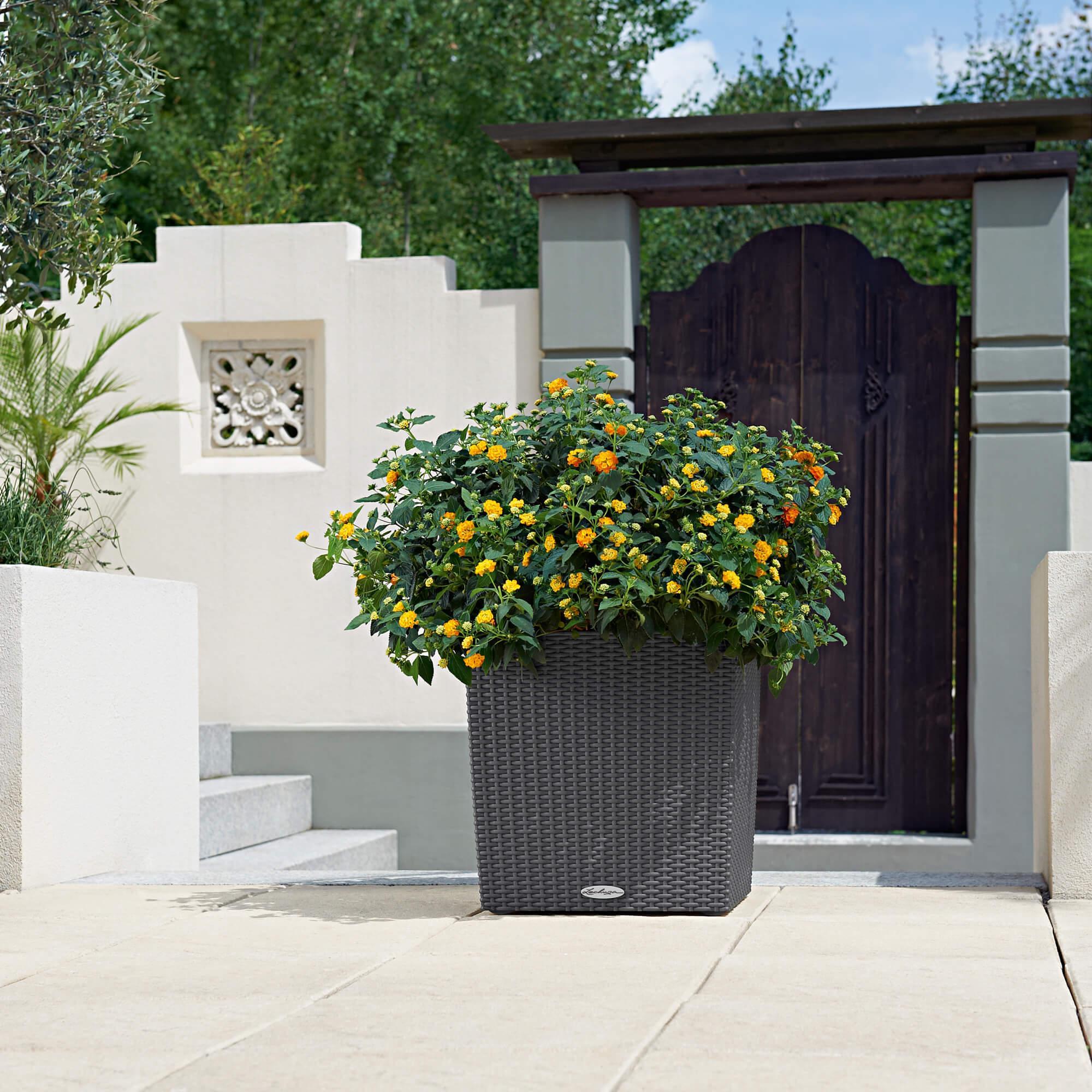 CUBE Cottage 40 granit - Bild 5