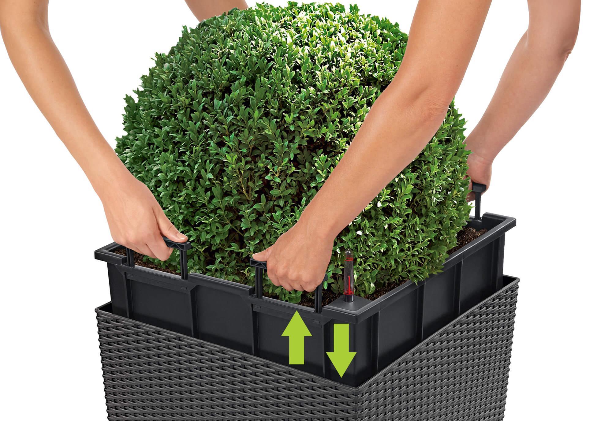 le_cube-cottage_product_content_liner