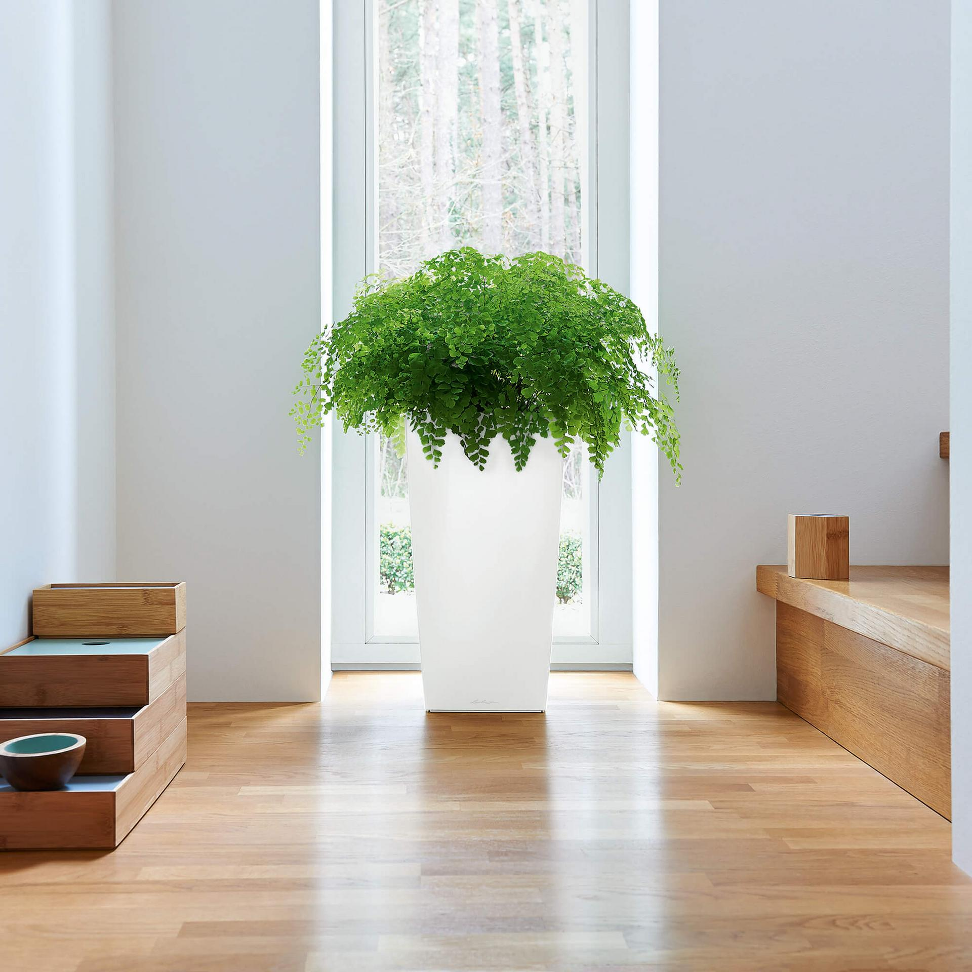 cubico 22 wei hochglanz. Black Bedroom Furniture Sets. Home Design Ideas
