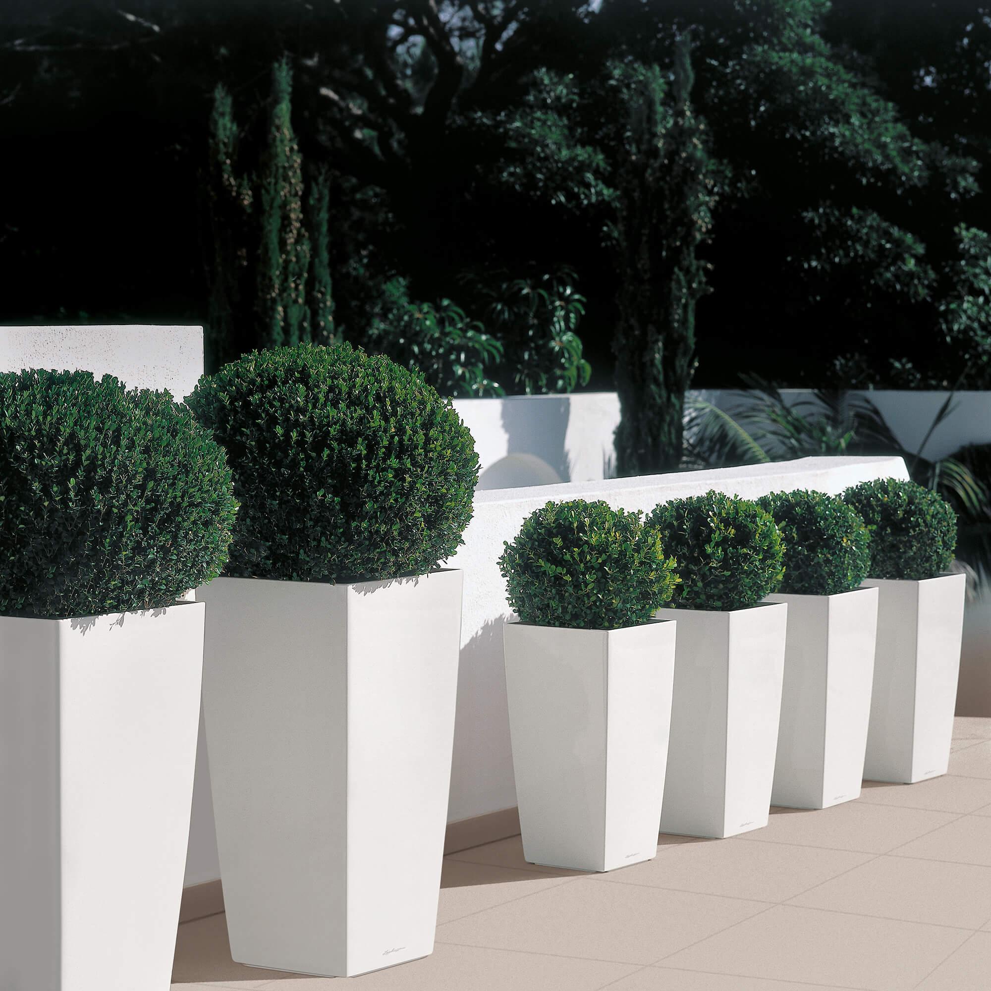 CUBICO 30 blanc brillant - Image 7