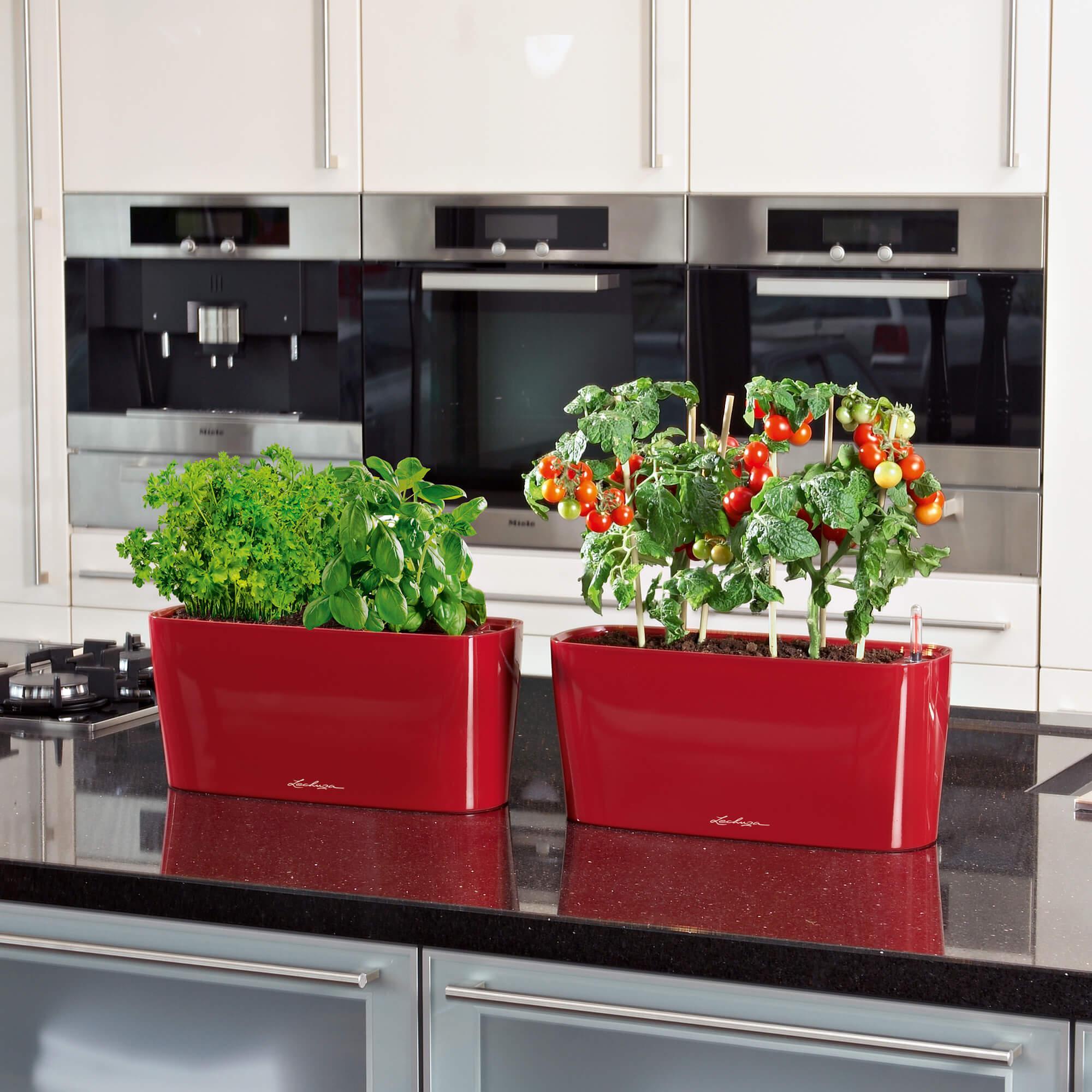 DELTA 20 roségoud hoogglans - Image 6