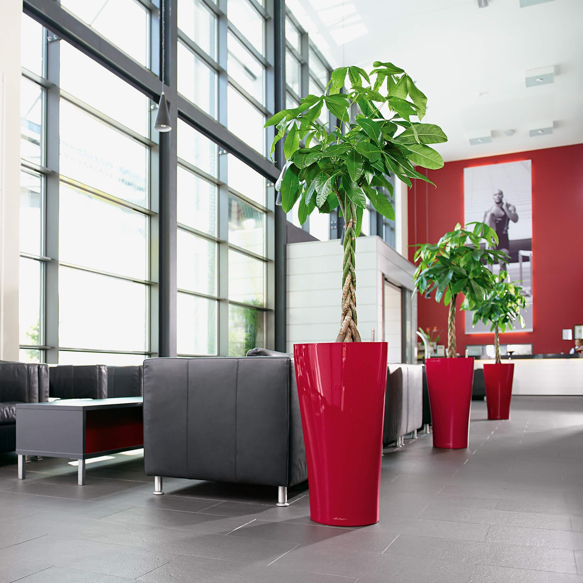 DELTA 40 rouge scarlet brillant - Image 6