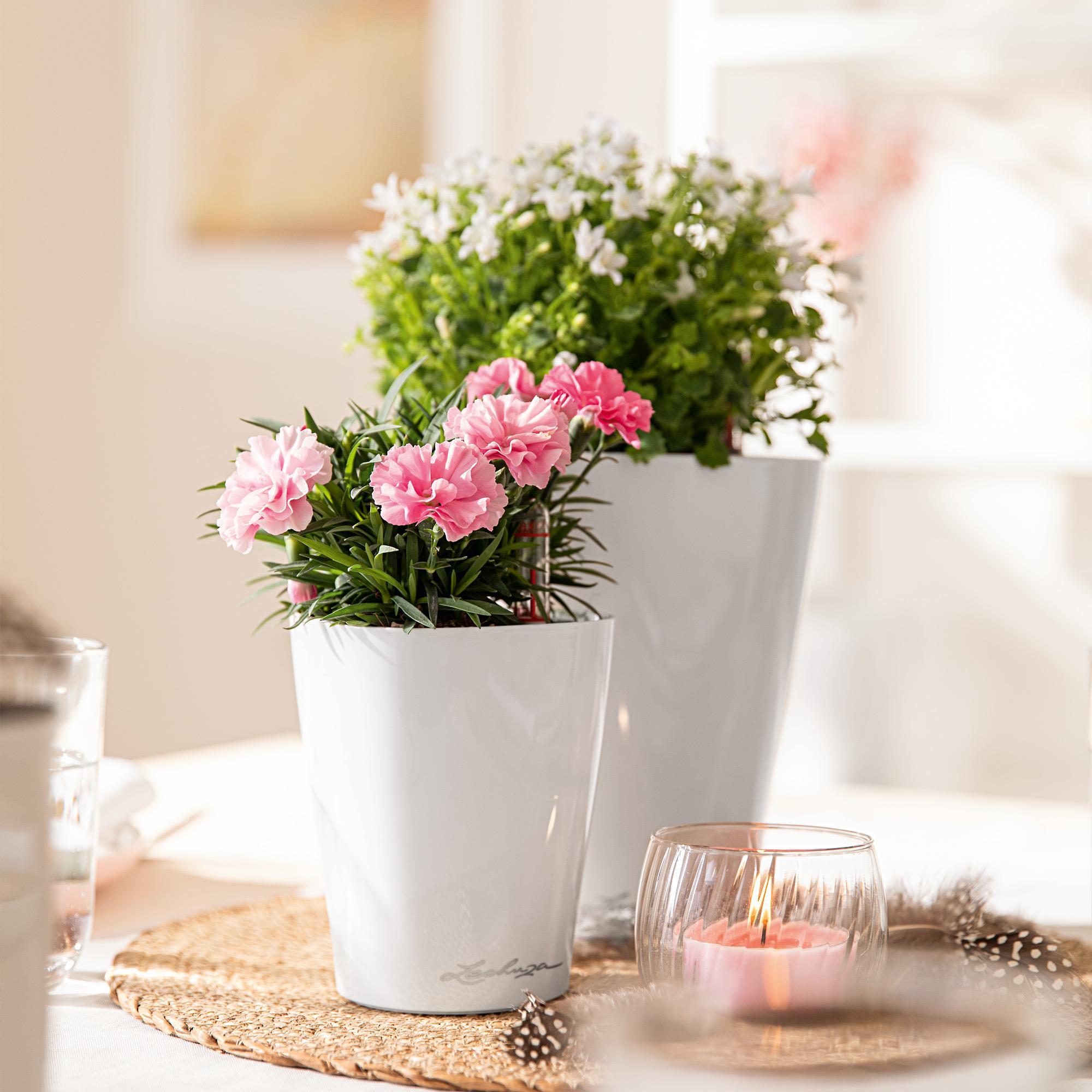 MINI-DELTINI pastel violet high-gloss - Image 7