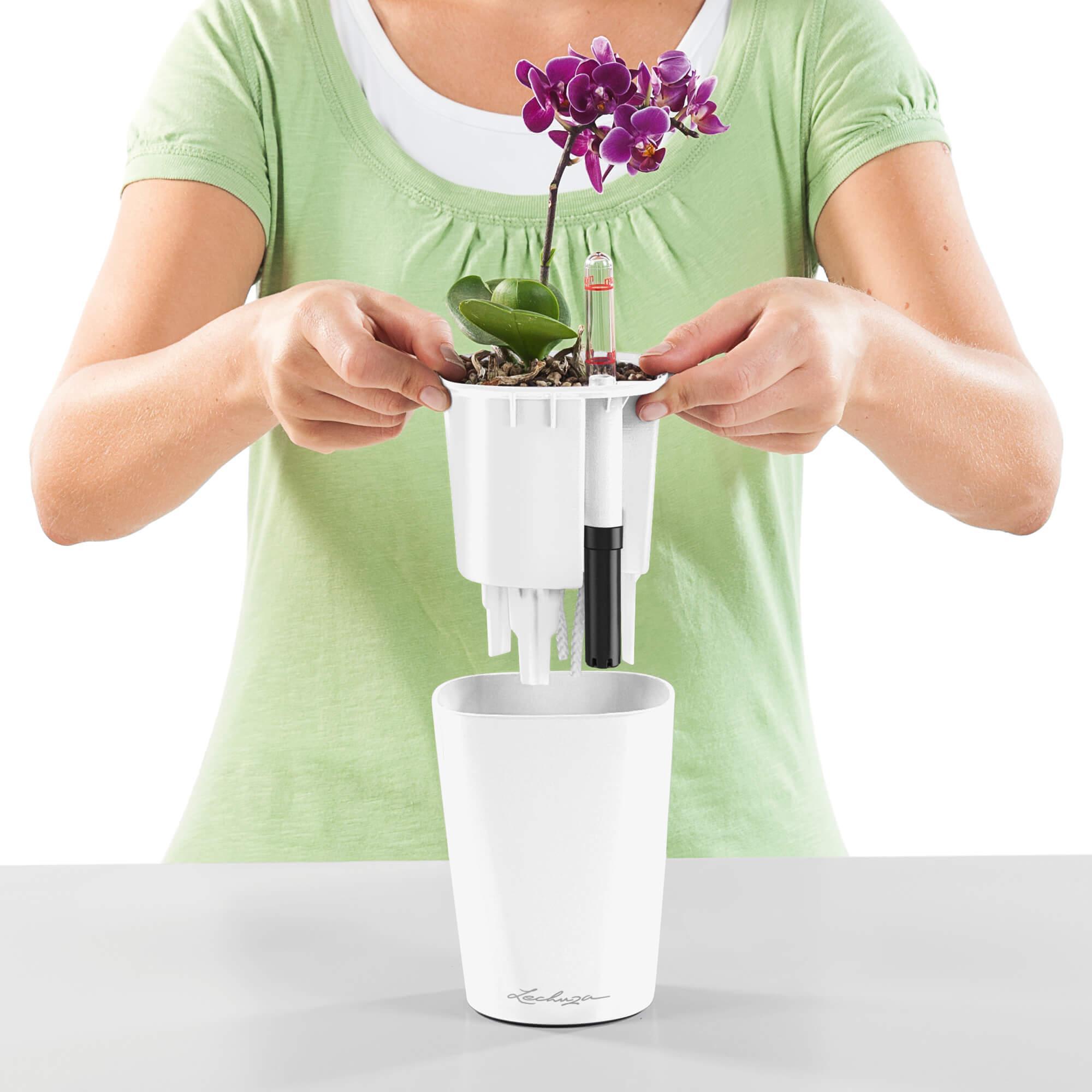 MINI-DELTINI violet pastel brillant - Image 2