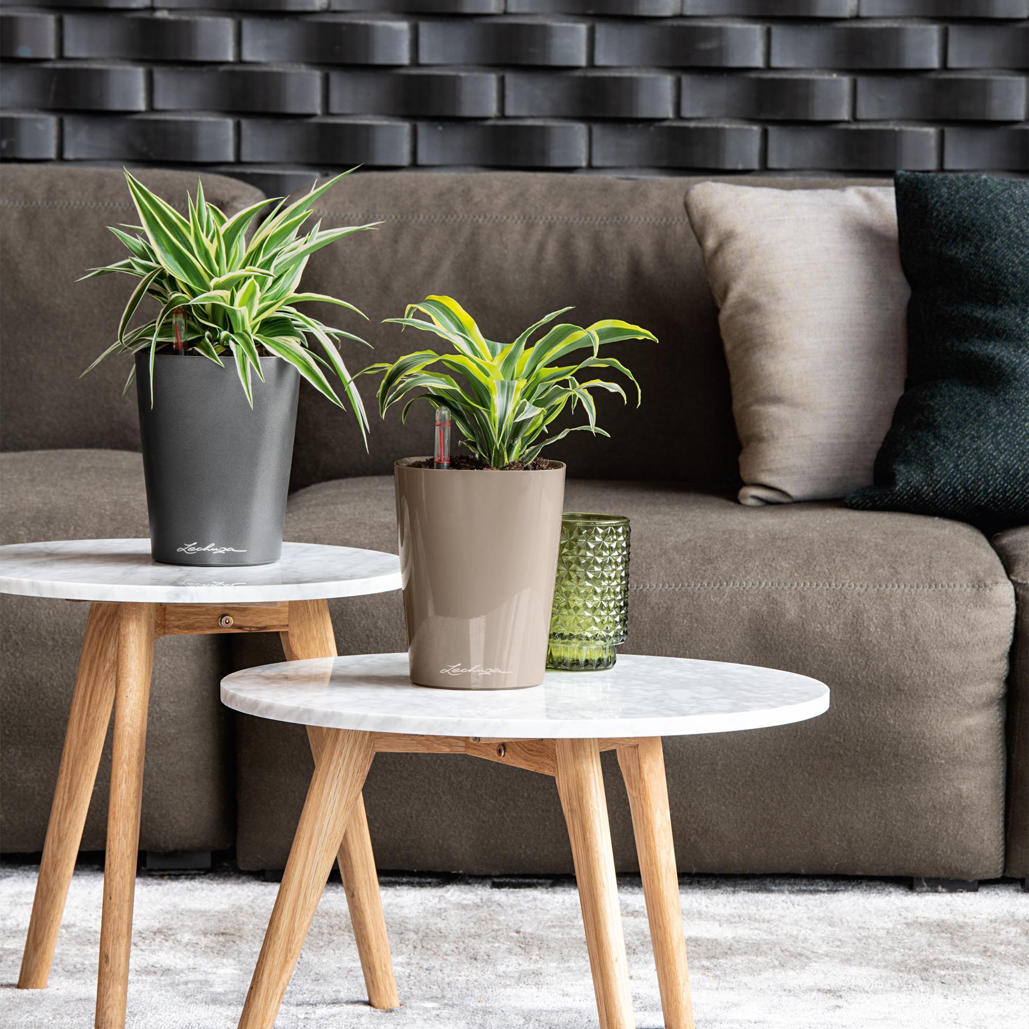 DELTINI pastel violet high-gloss - Image 7
