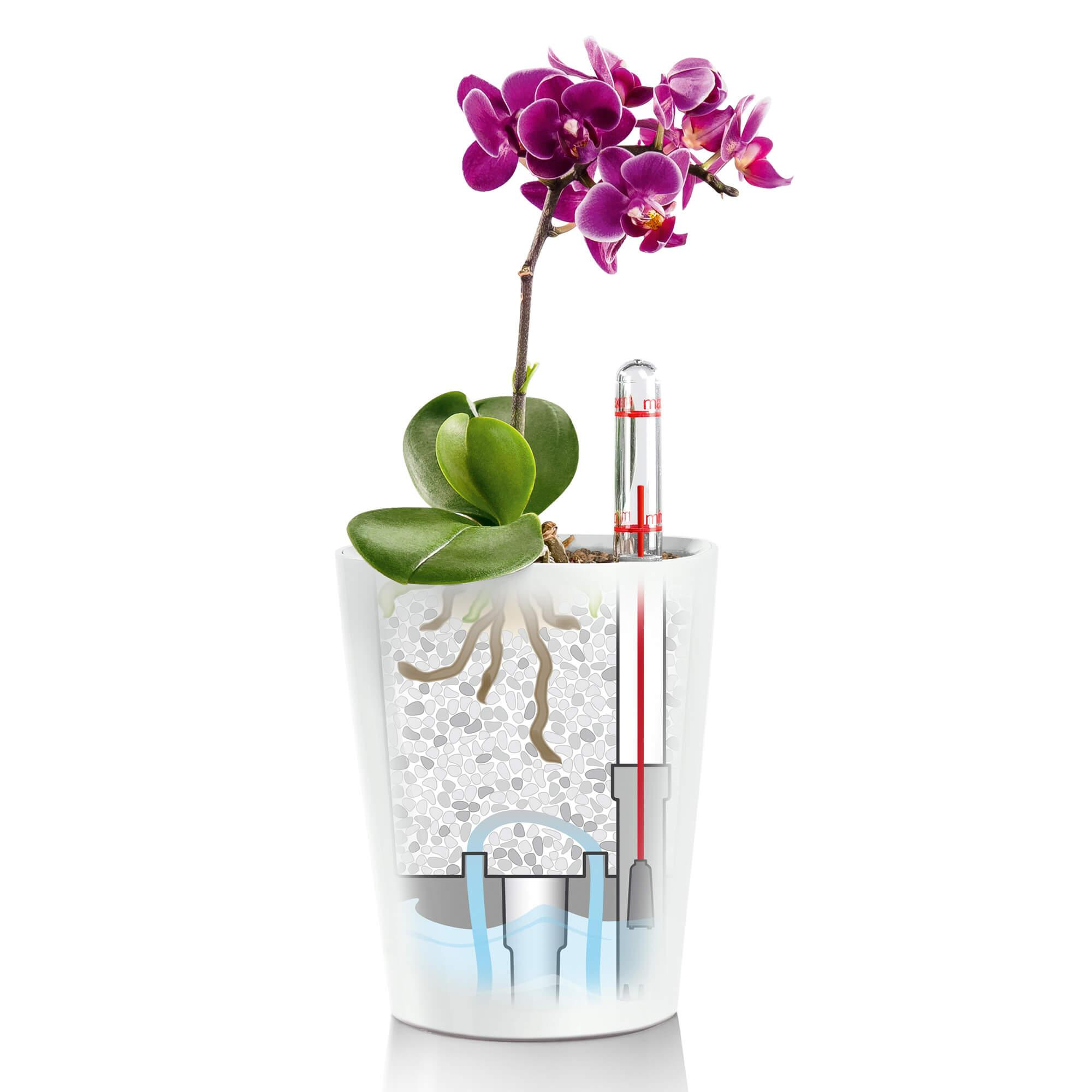 DELTINI olive green high-gloss - Image 8