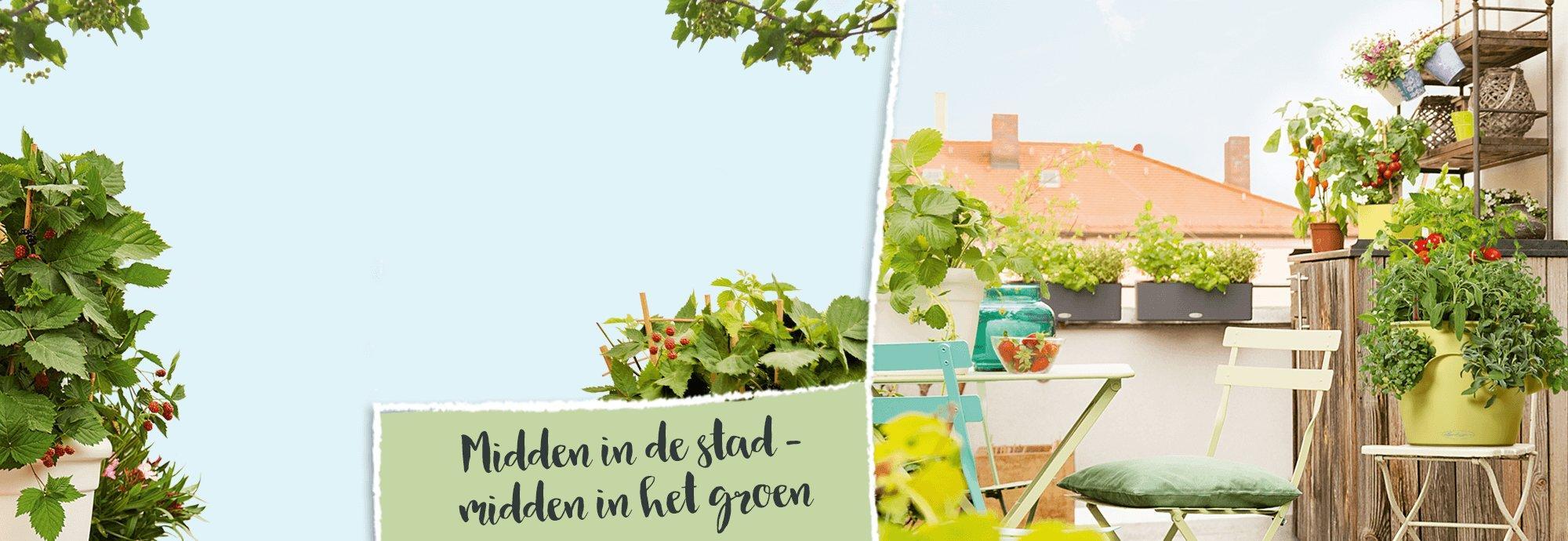 hero_banner_urban_gardening_nl