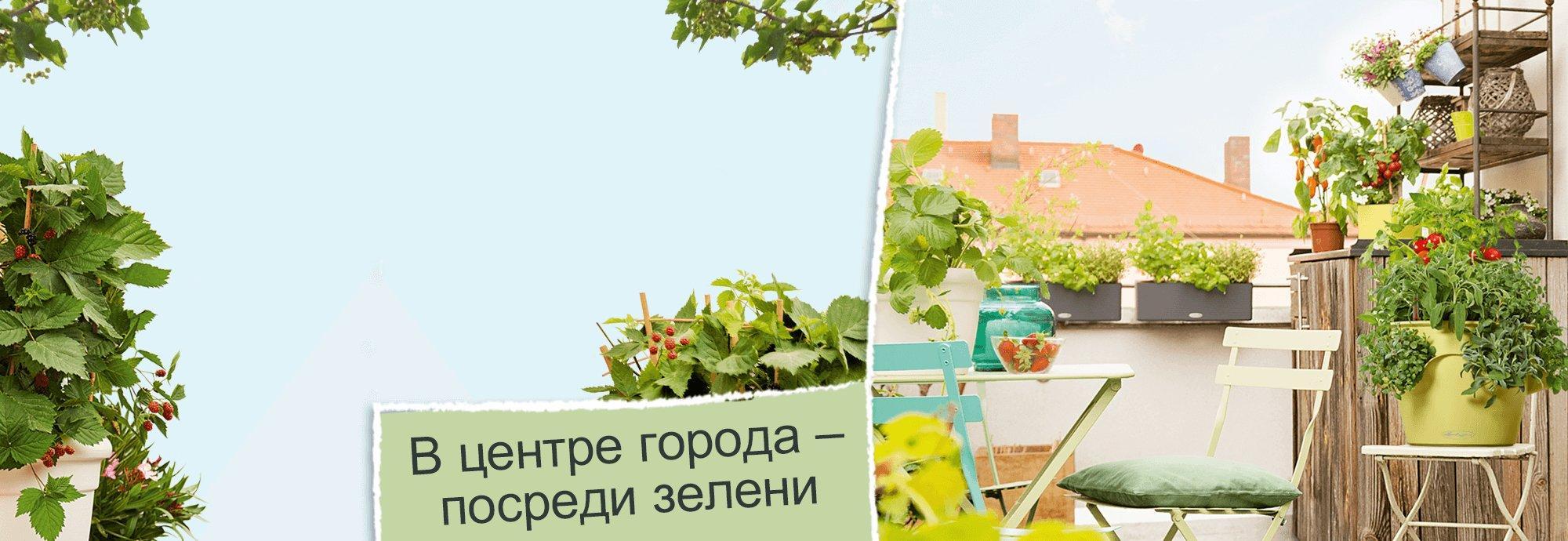 hero_banner_urban_gardening_ru