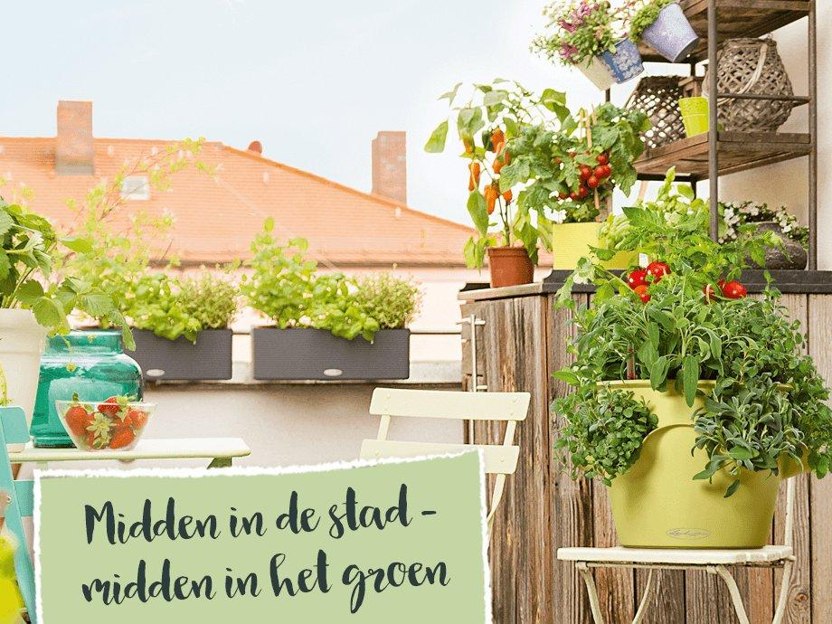 hero_banner_urban_gardening_xs_nl