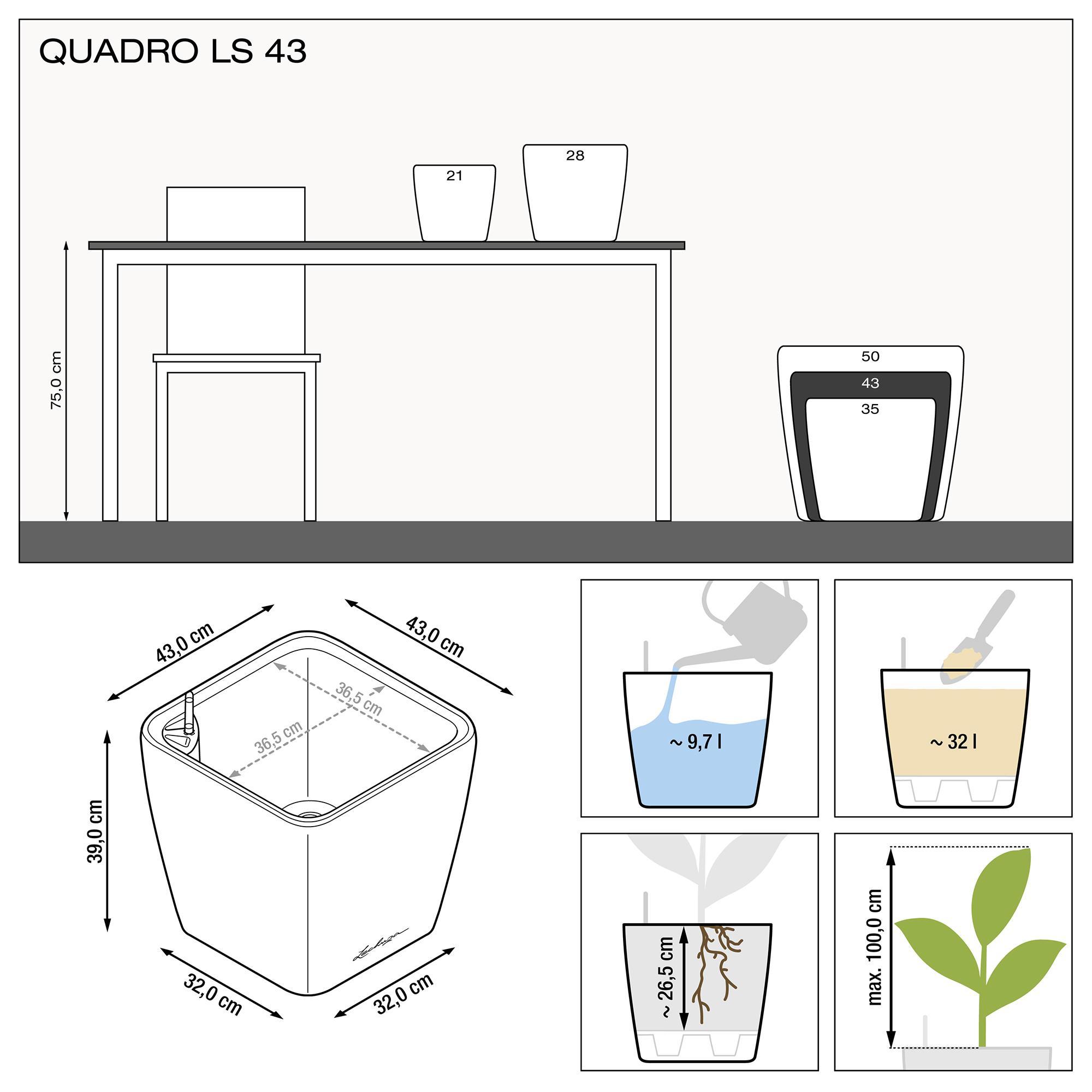 le_quadro-ls43_product_addi_nz