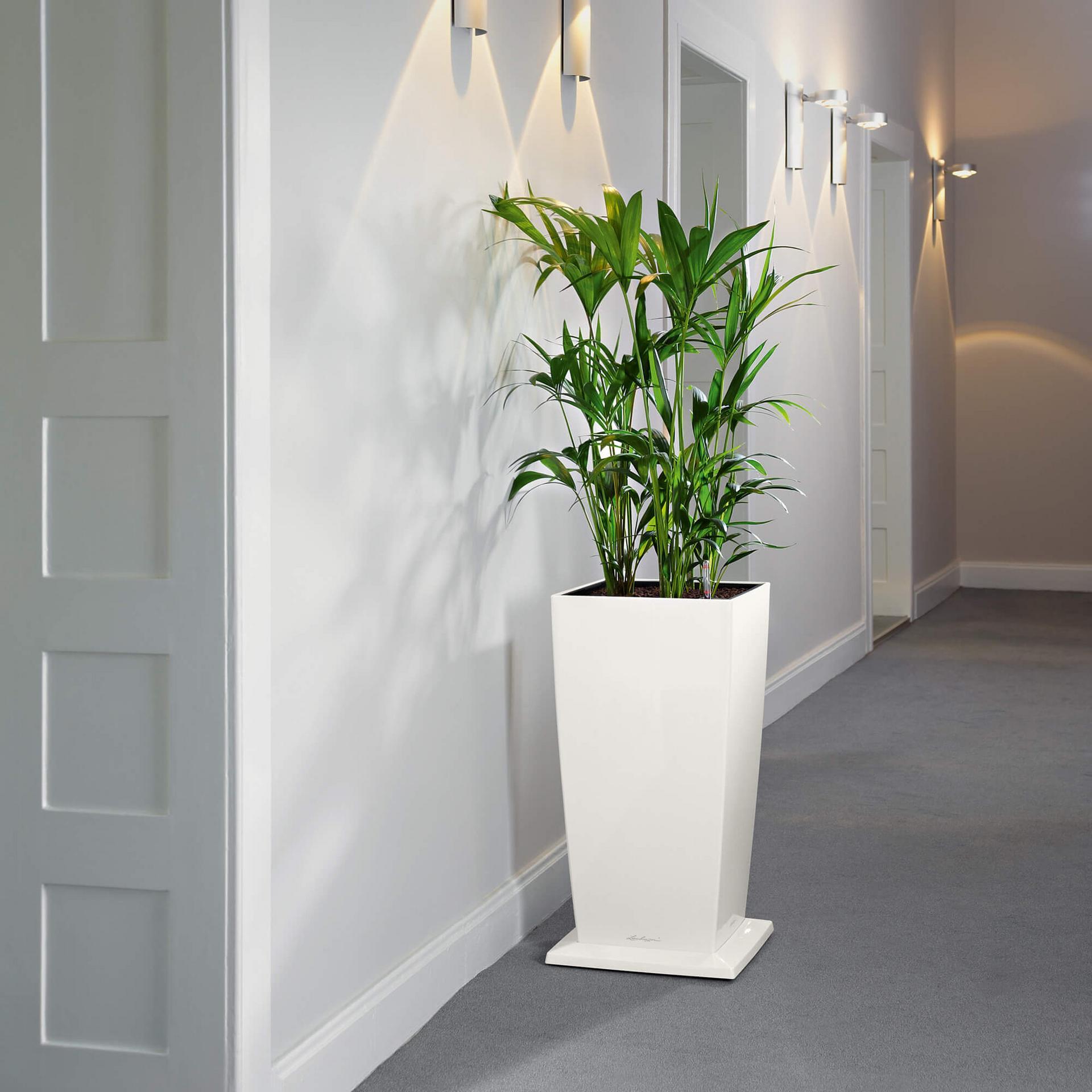 rolluntersetzer f r cubico 30 wei. Black Bedroom Furniture Sets. Home Design Ideas