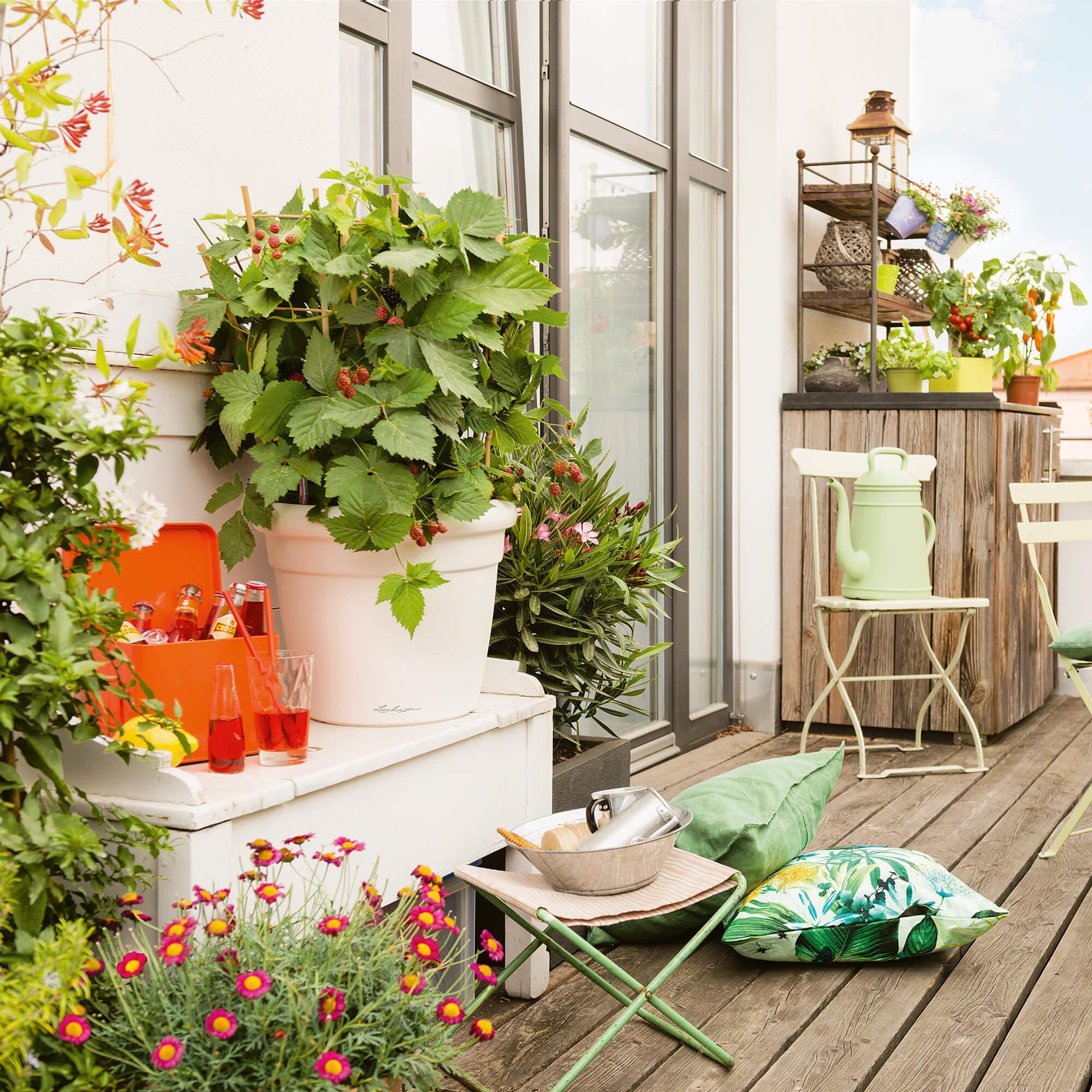 RUSTICO Color 35 white - Image 4