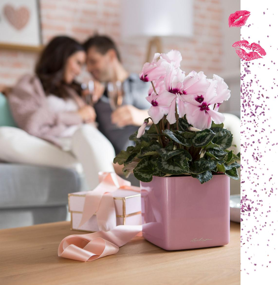 le_tw-gift-ideas_valentine_2
