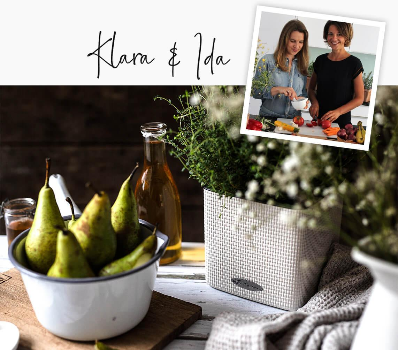 Delicious recipe ideas using fresh herbs