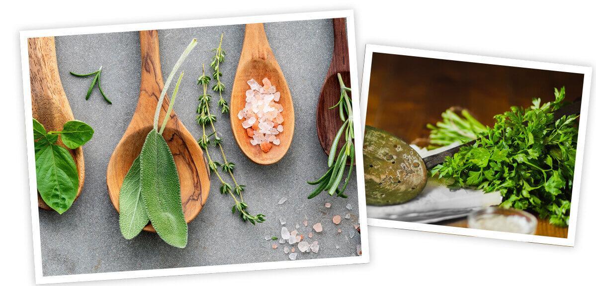 Kräuter und Salz