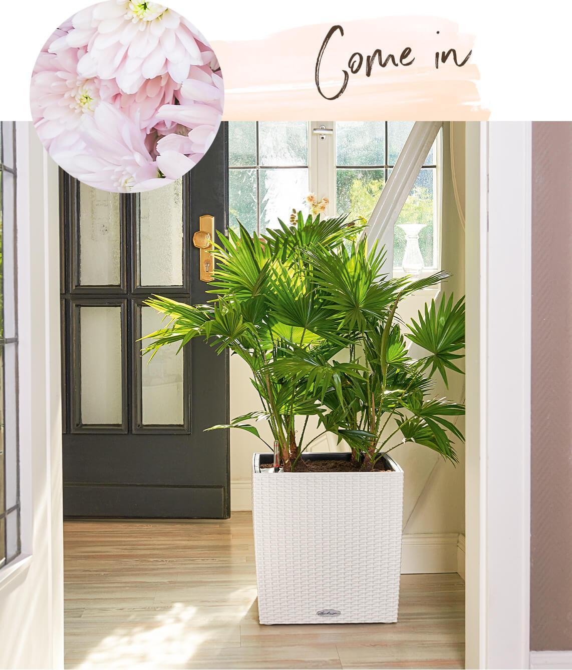 le_tw-spaetsommer_cube_cottage_indoor_en