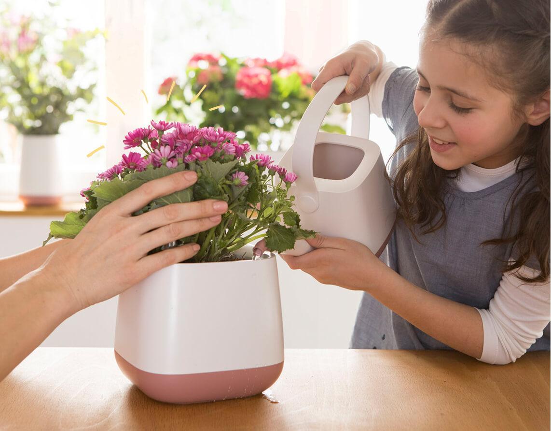 Zo eenvoudig kan de verzorging van planten zijn Stap 3