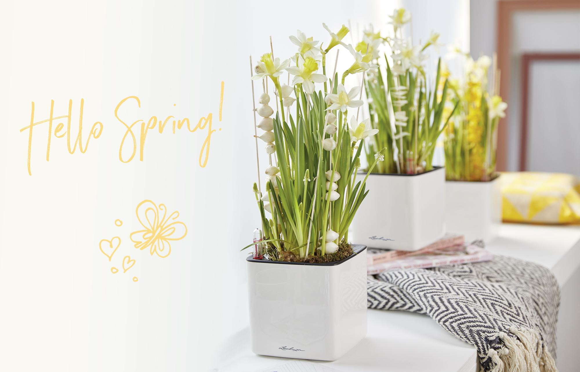 le_tw-uebersicht_spring_middle