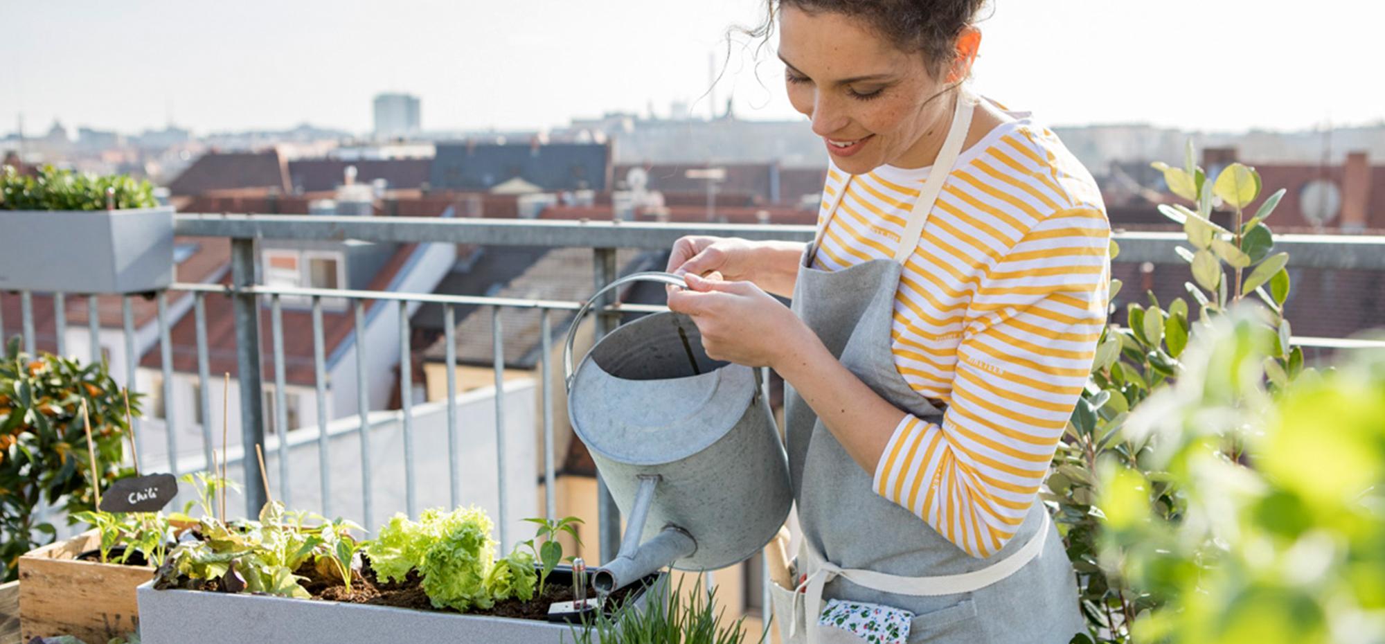 le_tw-uebersicht_urban_gardening