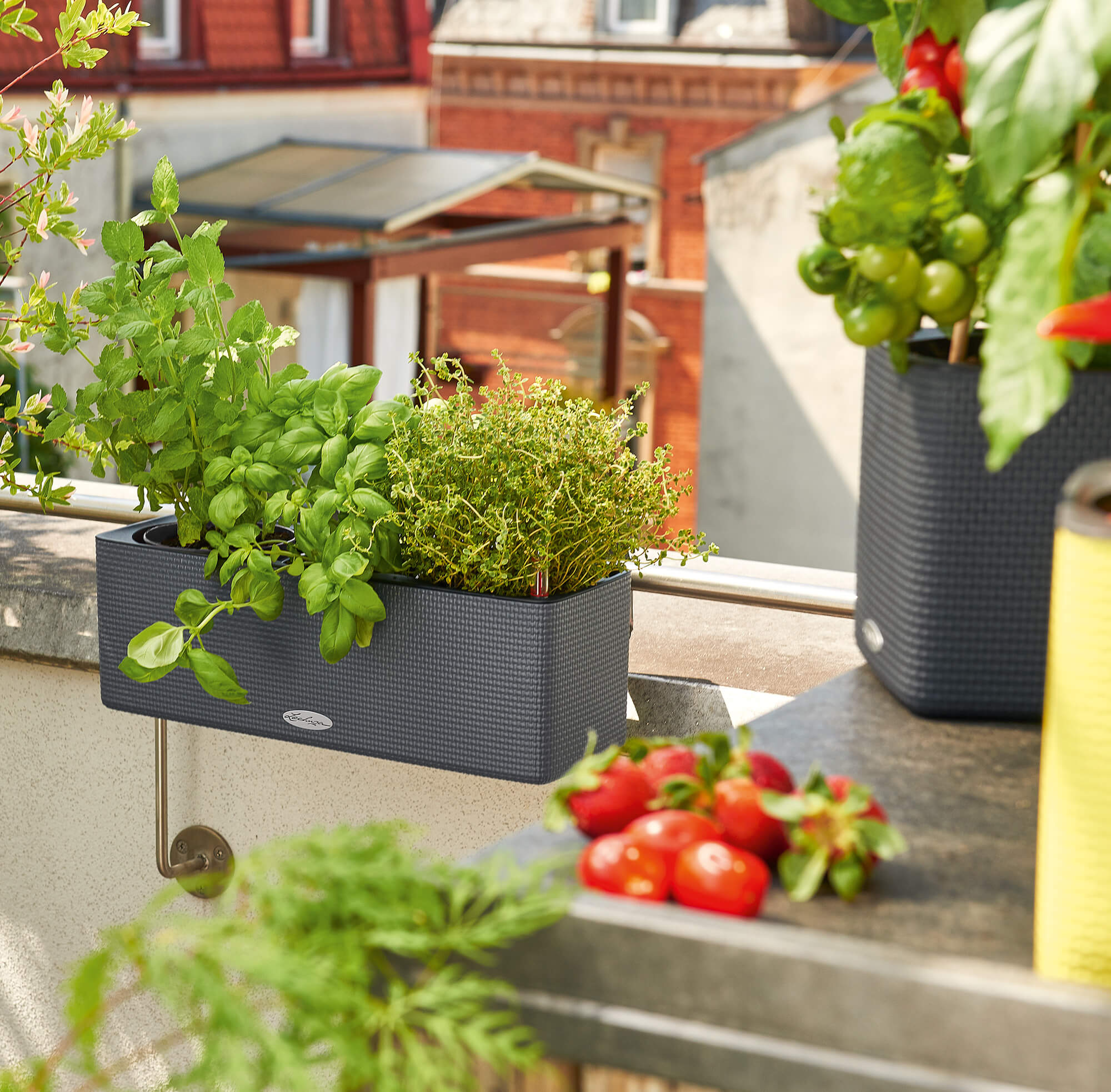 le_tw-urban-gardening_balconissima_gr.png