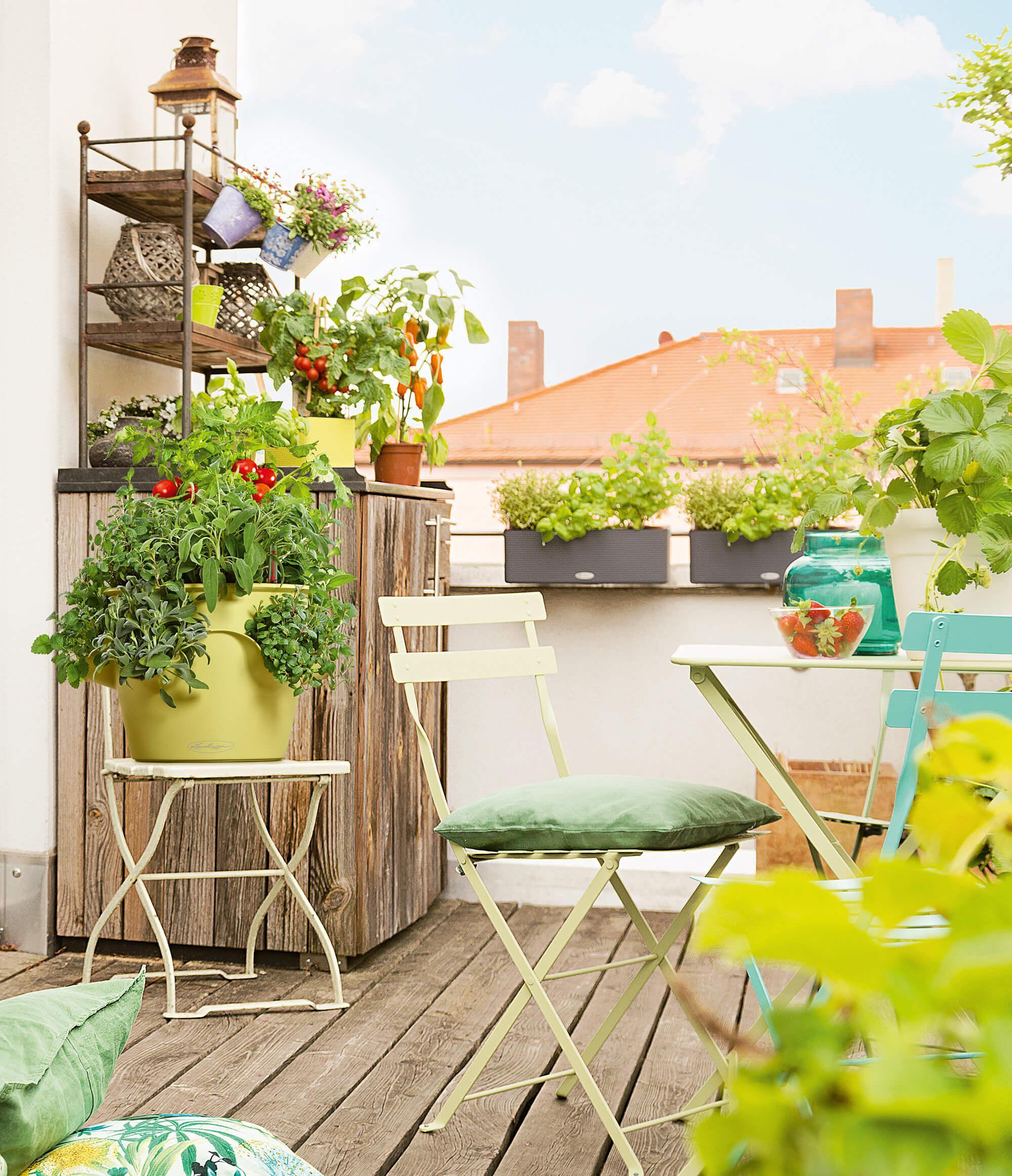 le_tw-urban-gardening_cascadino_gruen