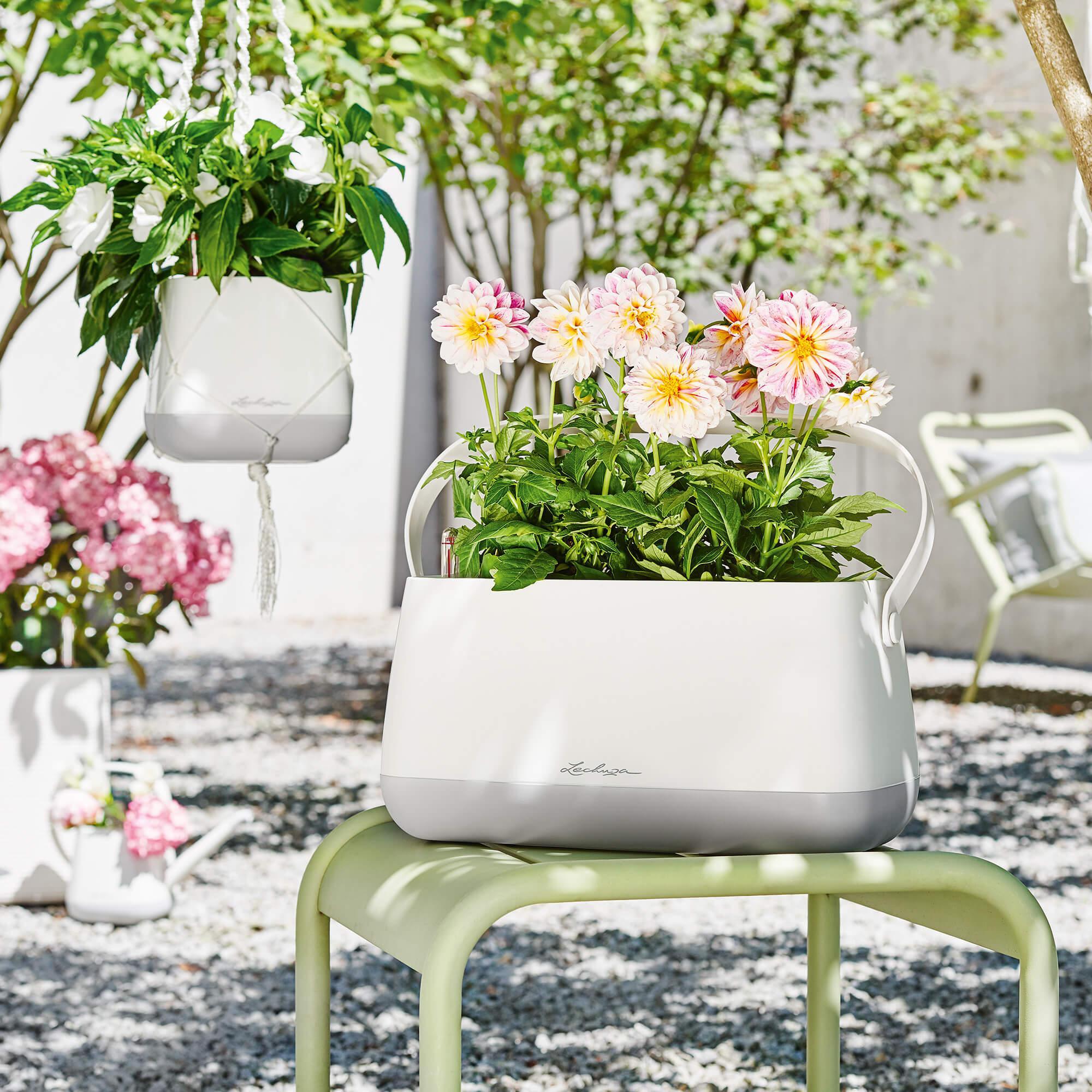 le_tw-urban-gardening_yula_gr