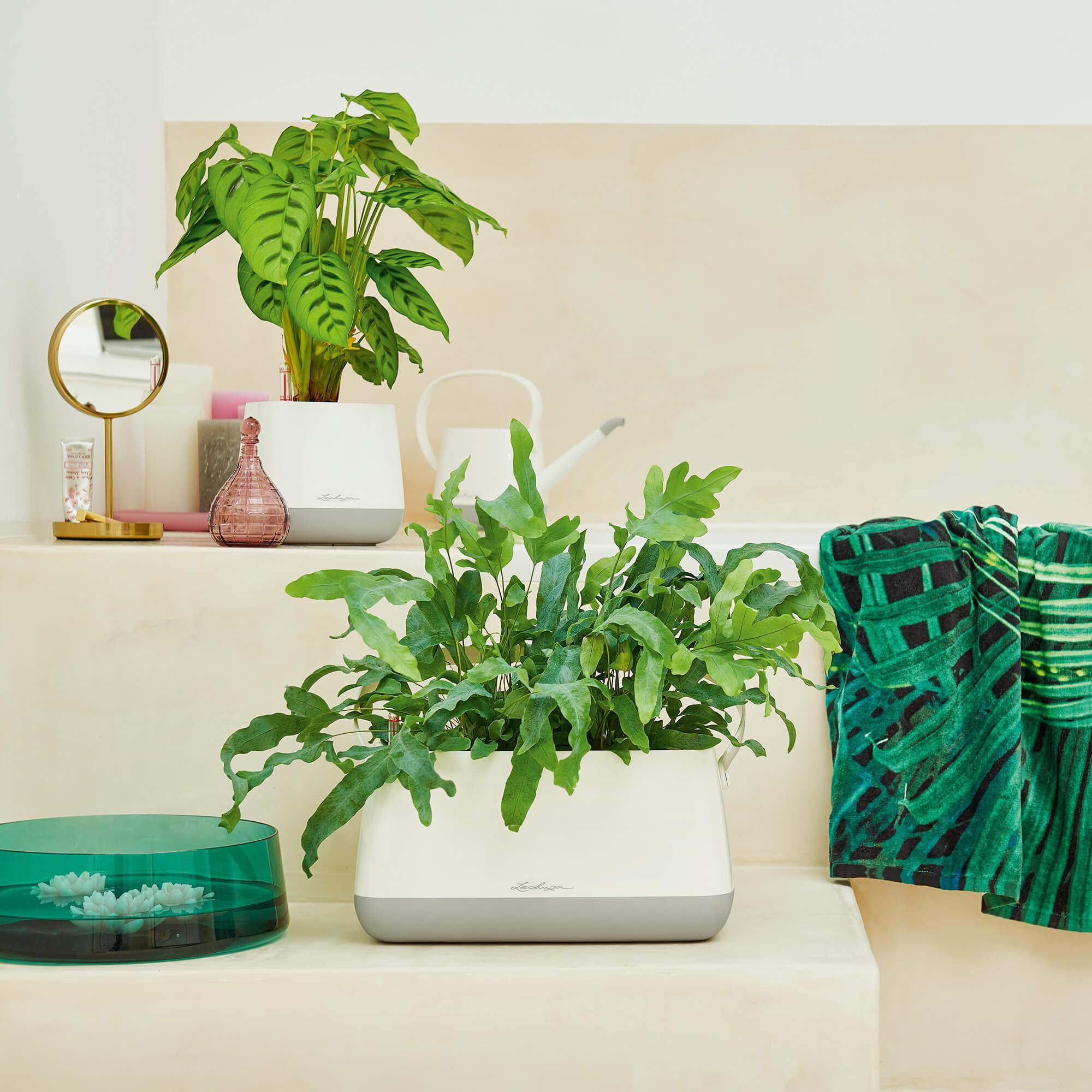 Maceta YULA blanco/verde pistacho satinado - Imagen 9