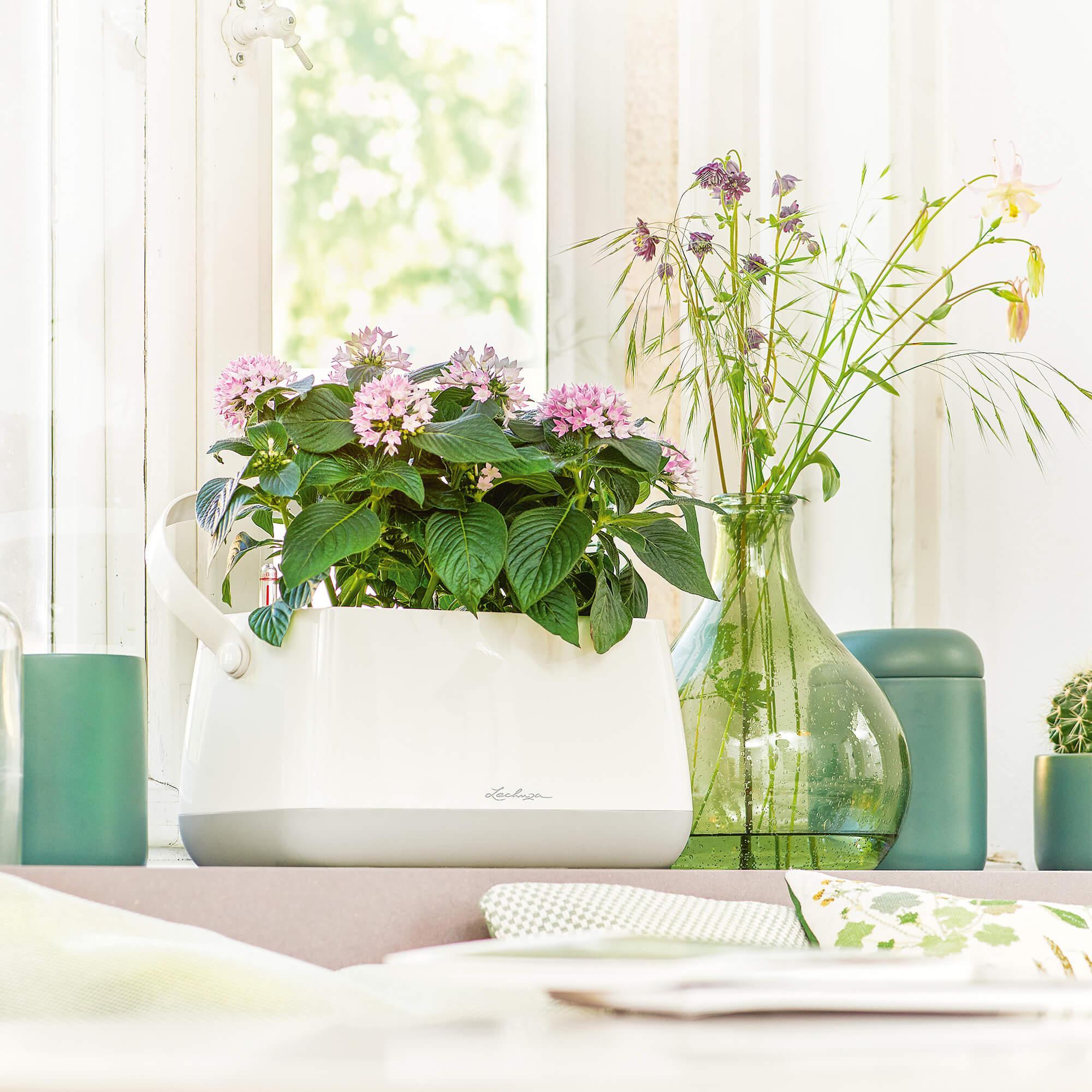 Borsetta per piante YULA bianco/grigio semi opache - Immagine 5