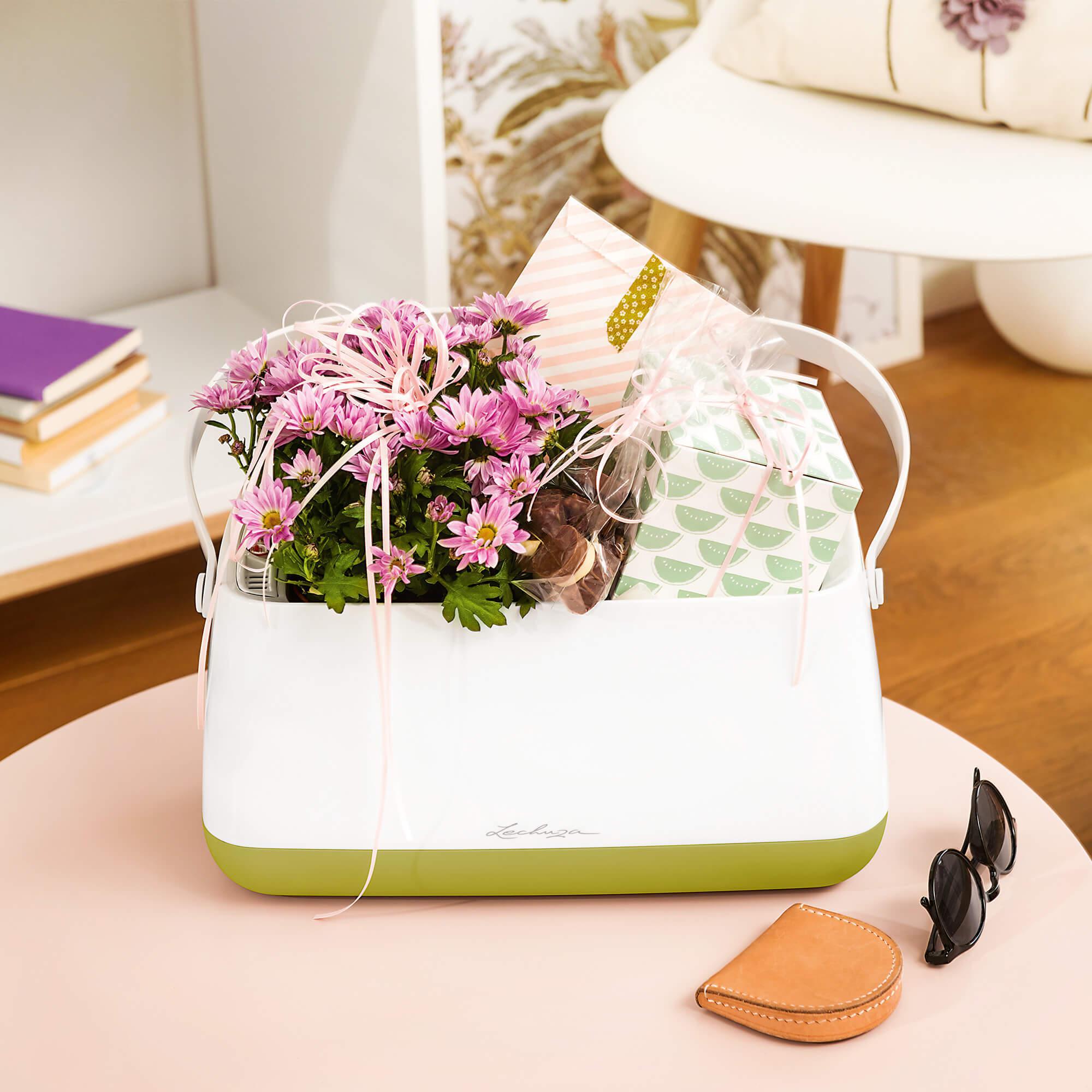 Корзинка для растений YULA белый/фисташковый - изображение 6