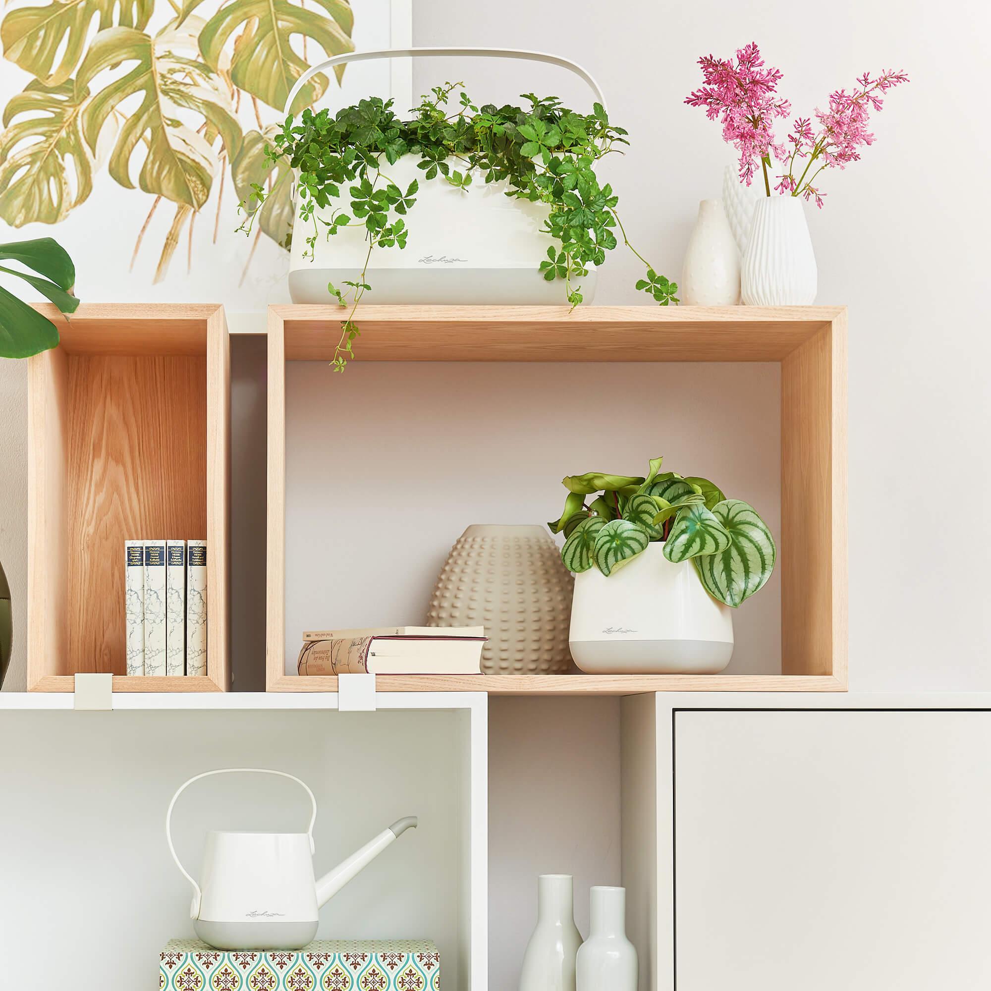 Borsetta per piante YULA bianco/grigio semi opache - Immagine 9