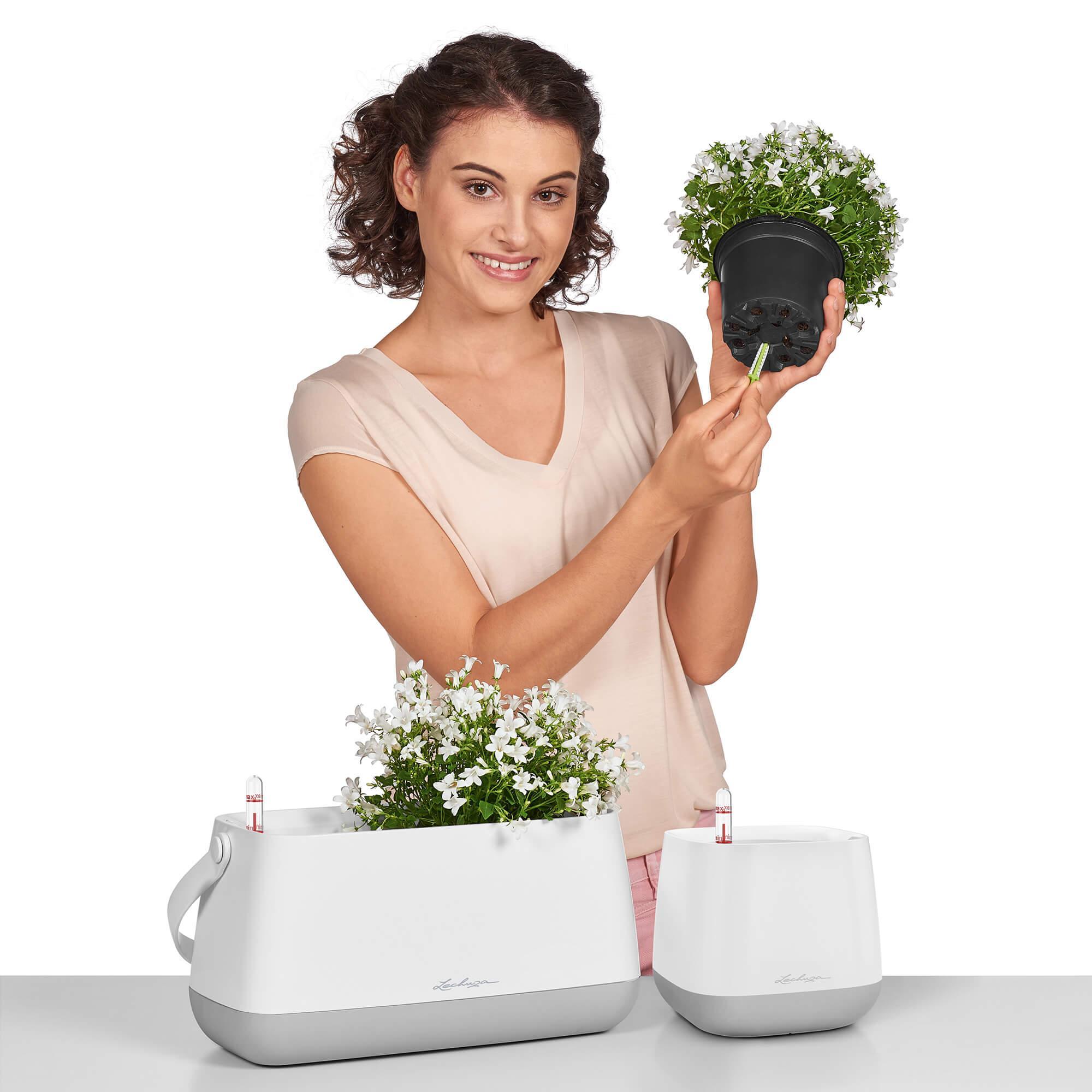 Borsetta per piante YULA bianco/grigio semi opache - Immagine 4
