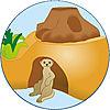 4853-A featureimage Cachette pour suricate