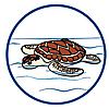 6979 featureimage schwimmt