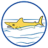 70097 featureimage Hai schwimmt