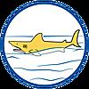 70097 featureimage shark floats