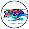 70100 featureimage Schildkröte schwimmt