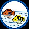70183 featureimage schwimmt