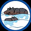70354 featureimage schwimmt