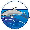 7363 featureimage schwimmen