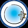 9233 featureimage Fond vitré avec fonction «loupe»