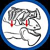 9248 featureimage L'armure du dragon est amovible