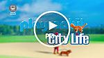 70146 video thumbnail
