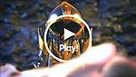 70845 video thumbnail